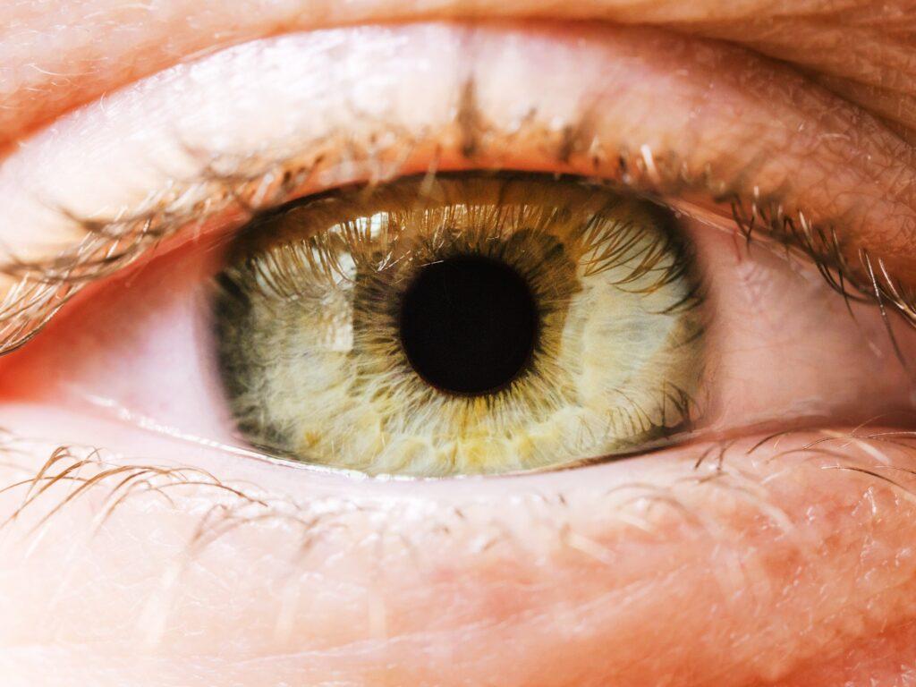 Extreme close up of woman's grenn eye iris. Human eye iris contracting.
